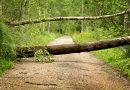 Sturmschäden durch Yulia